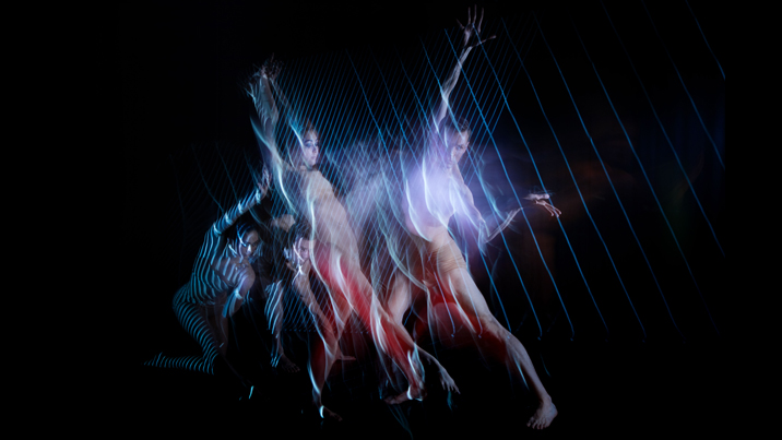 sydney dance company 2016 packages   roslyn packer theatre walsh bay